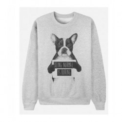 "Sweatshirt ""Being normal is boring"""